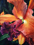 Prismatic Rhapsody (Orange and Pink Orchid) by ebjeebies