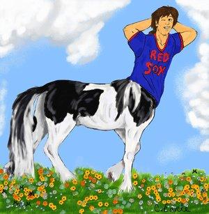 Darryl Gypsy Vanner Centaur by TheCentaurClub