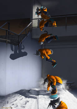 Stu wall ride flip