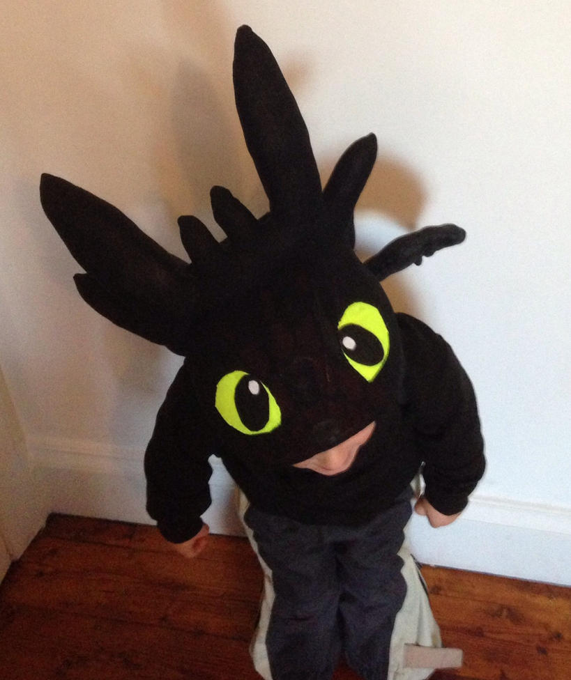 How To Train Your Dragon Toothless Costume For Dogs