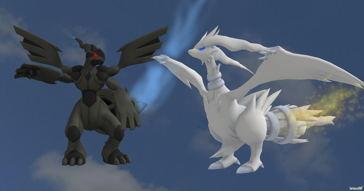 Reshiram and Zekrom by Bluedragon85