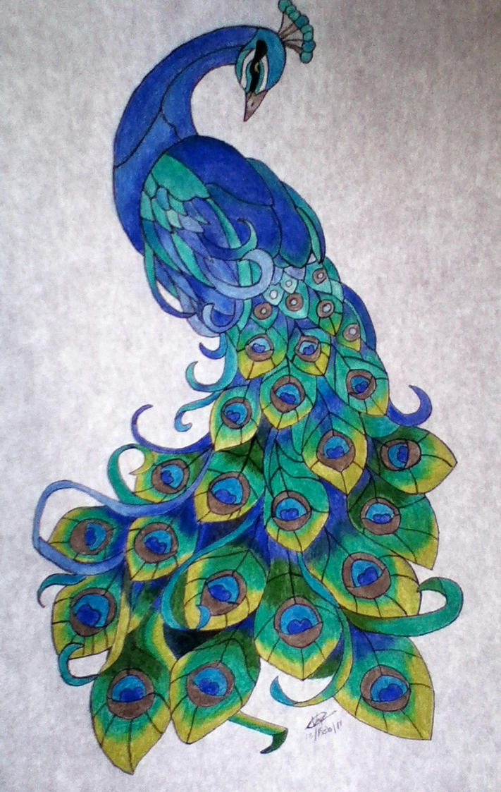 Pavoreal by aleroman on deviantart for Art 1129 cc