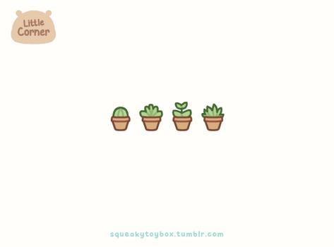 Little Succulents