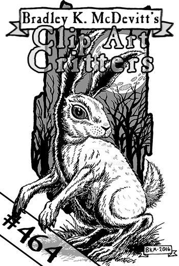 CAC464-Ghostly Rabbit by BKMcDevitt