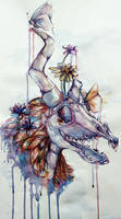 Skull: watercolor by Wolf-Fram