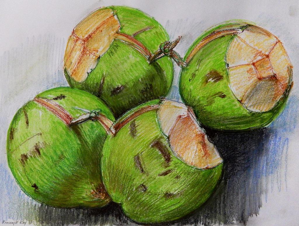 Sketching Green Coconuts Daab By Roy P
