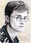 Daniel Radcliffe miniature