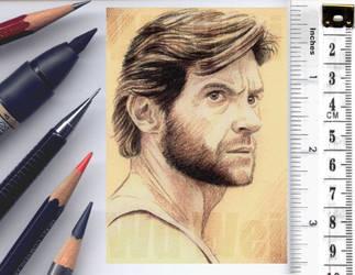 Wolverine sketchcard by whu-wei