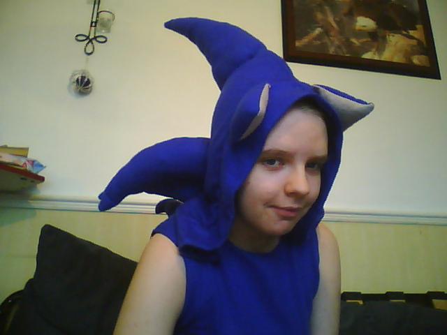 Sonic Zip-Up Hoodie