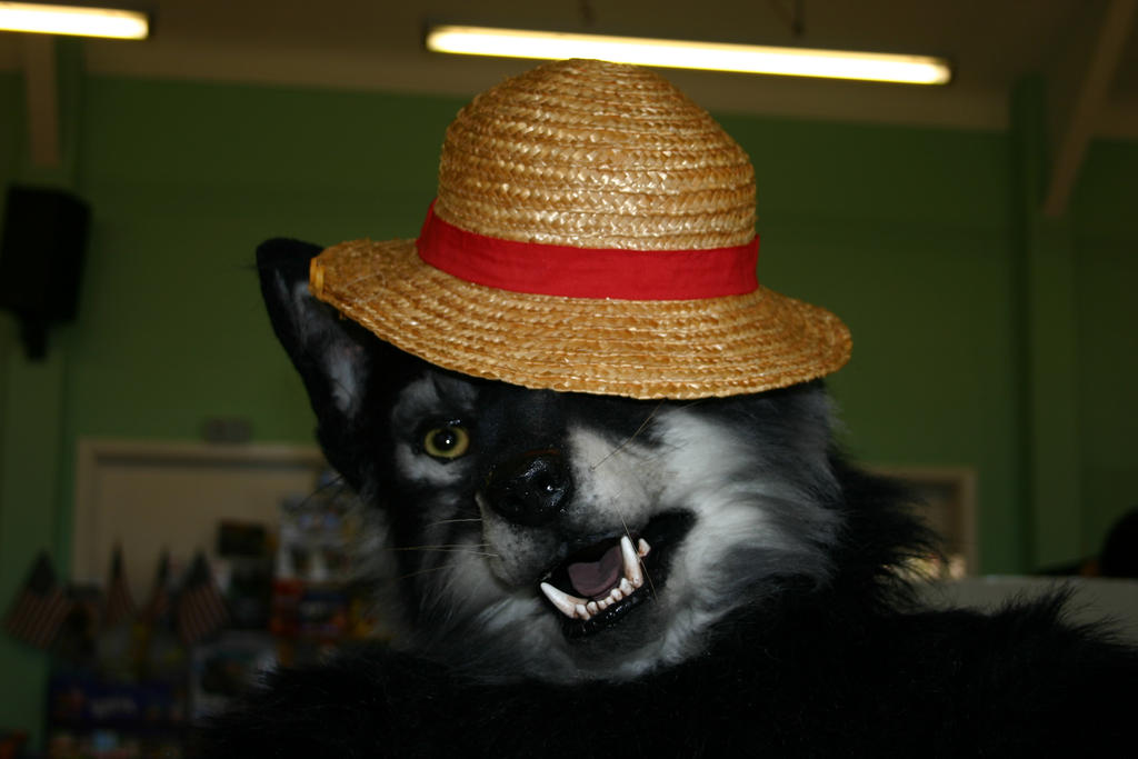 Wolf in Luffy's hat... by Cassiopeia25