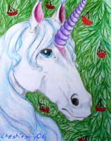 Unicorn by Chashirskiy