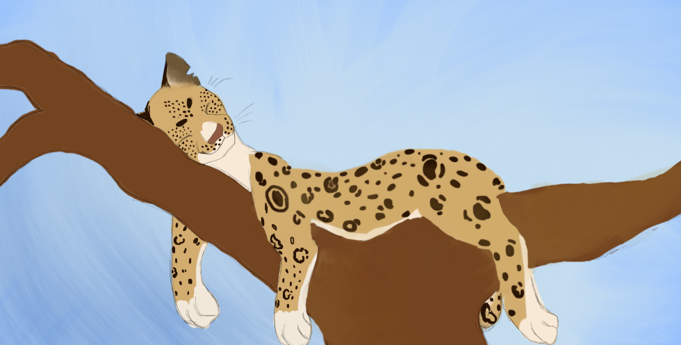 Lazy Leopard by Hollyleaf12345678910