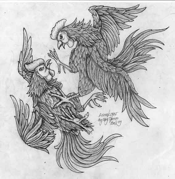 Cock fight by anomkojar on deviantart - Cock designing ...