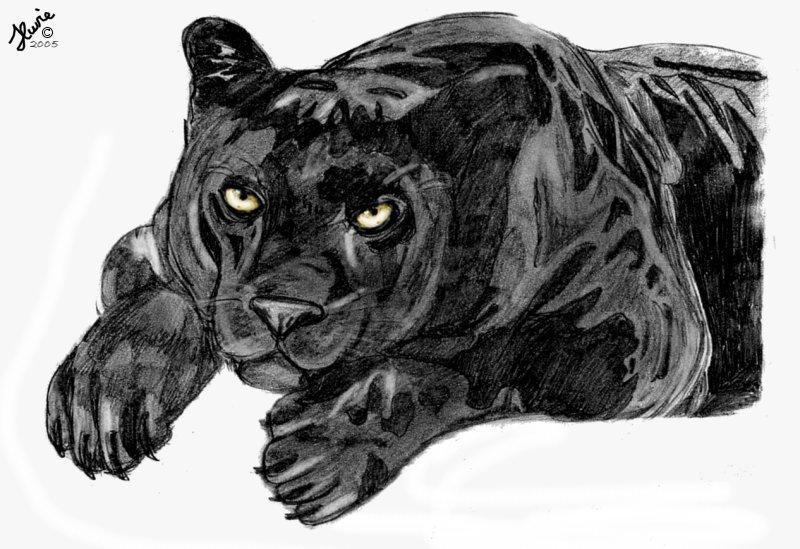 Black Panther By Portela On Deviantart: Black Panther By KonekoKisses On DeviantArt