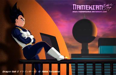 Vegeta - Banister Sunset by NamekianKAI