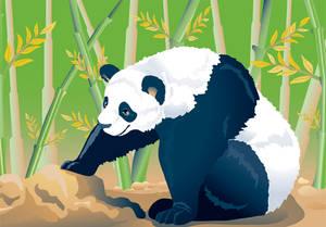 Panda Wu