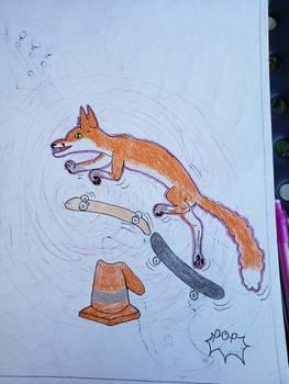 skateboarding fox