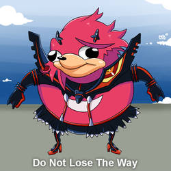 Don't Lose The Way