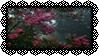 Pink Flowers Stamp | f2u
