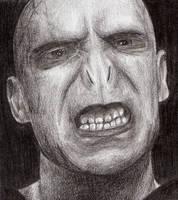 Voldemort by Aura3107