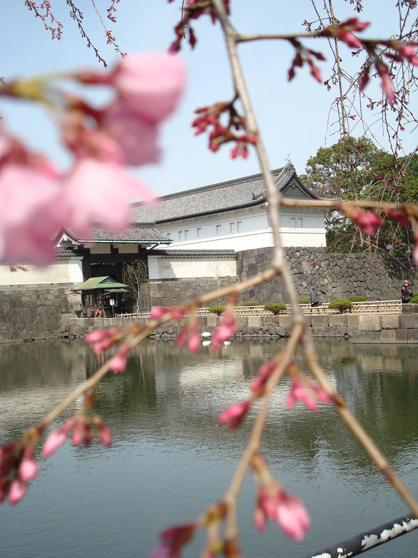 Humble shot of Imperial Palace by thewordlesssignature