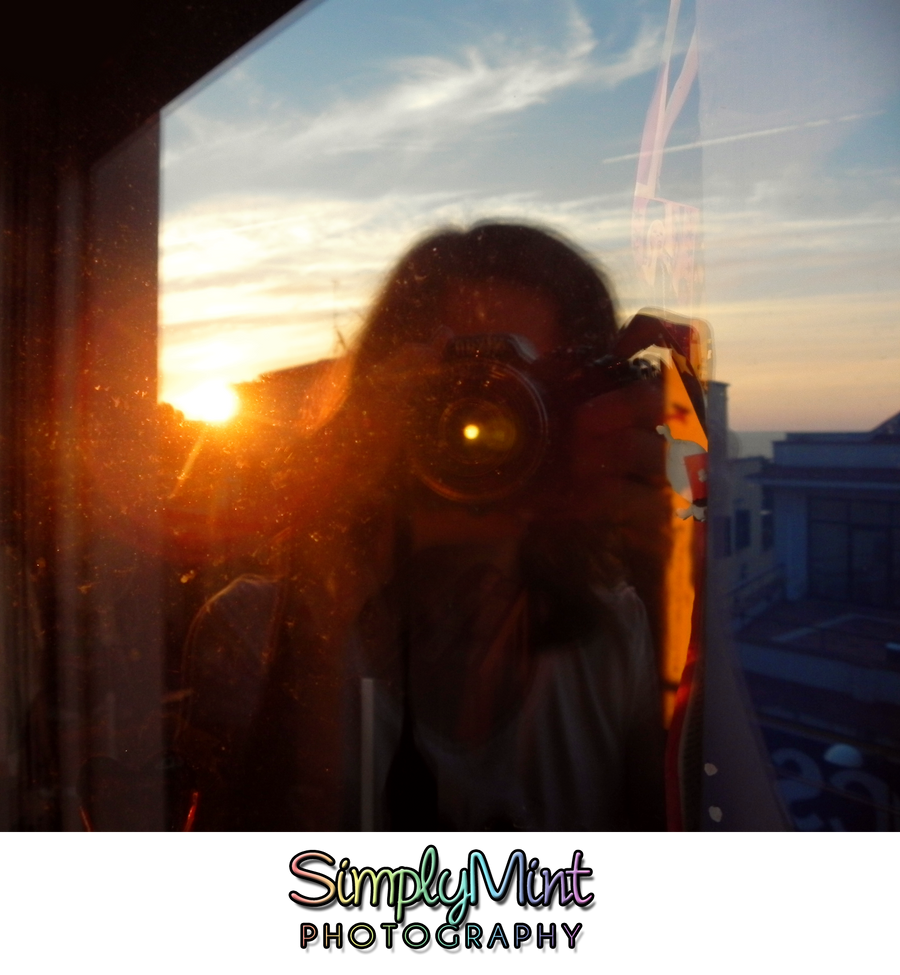 SimplyMint's Profile Picture