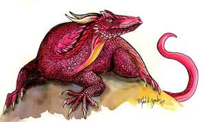 Red Drake Sketch