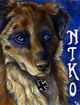 Niko Conbadge by Foxfeather248