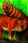Not-a-fox