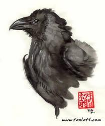 Mulberry Black Bird