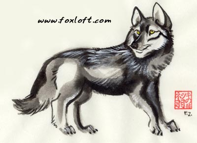 Little Black Wolf by Foxfeather248