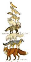 Fox Stack