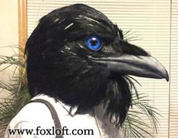Raven Mask - Tempest