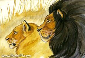 Kalahari Lions by Foxfeather248