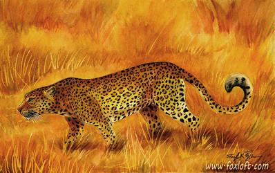 Leopard Sunset