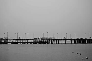 Untitled in grey by brzeginia