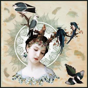 Feathers by DeerDandy
