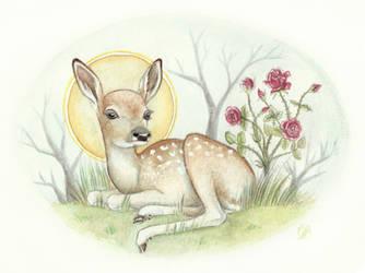 Sacred Fawn by DeerDandy