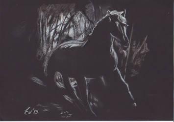 Night Run by edsart39