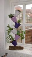 Herb pot stand