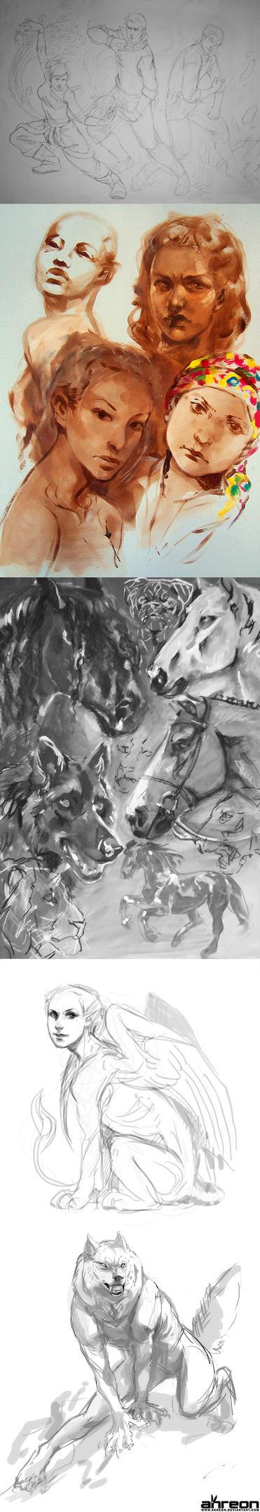 sketch dump 4 - Korra, werewolf, sphinx etc. by akreon