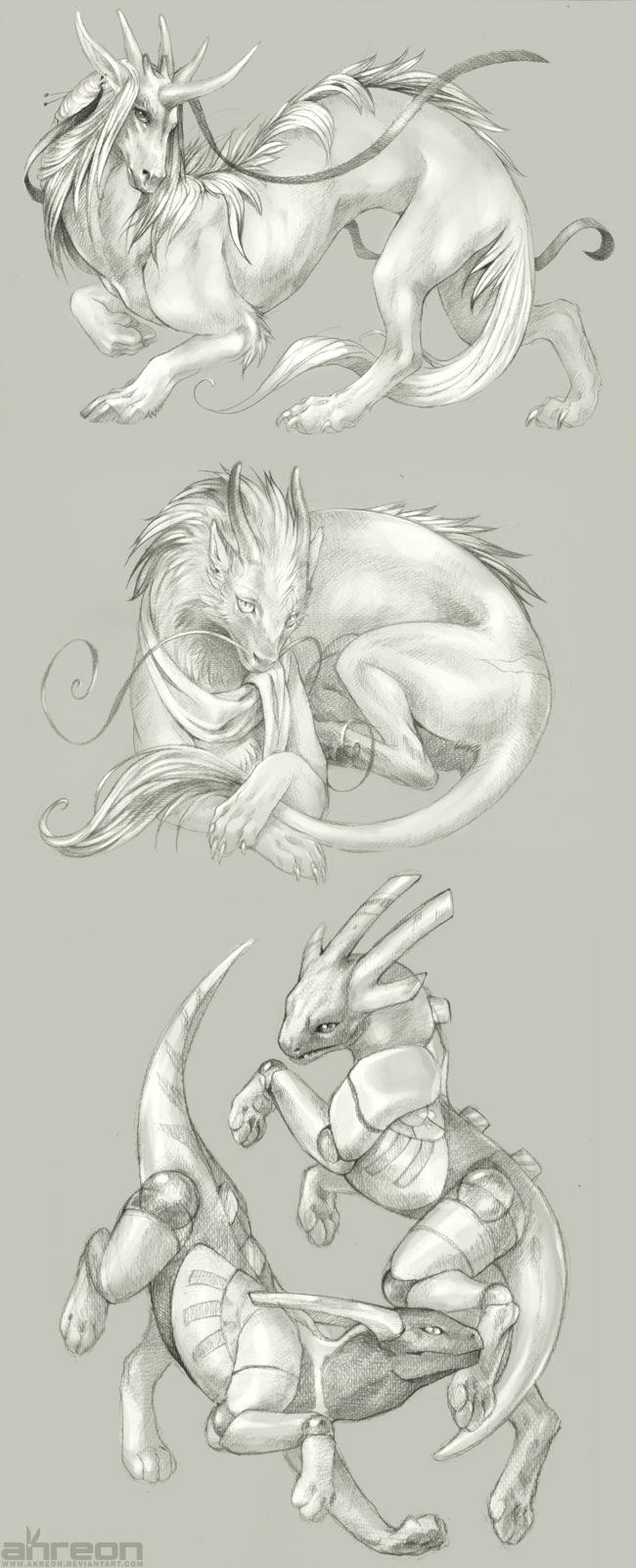 dragon thingies by akreon