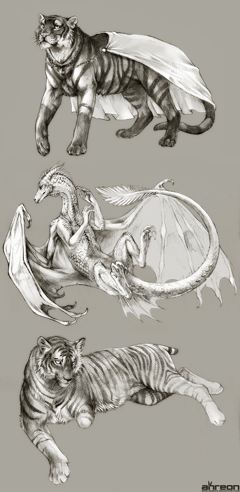 sketch commissions - tiger, dragon by akreon