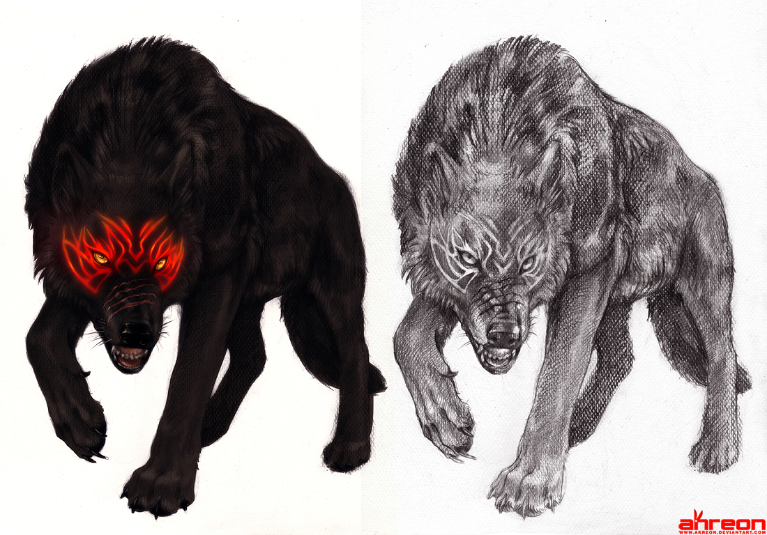 Black wolf with blue eyes drawing - photo#10