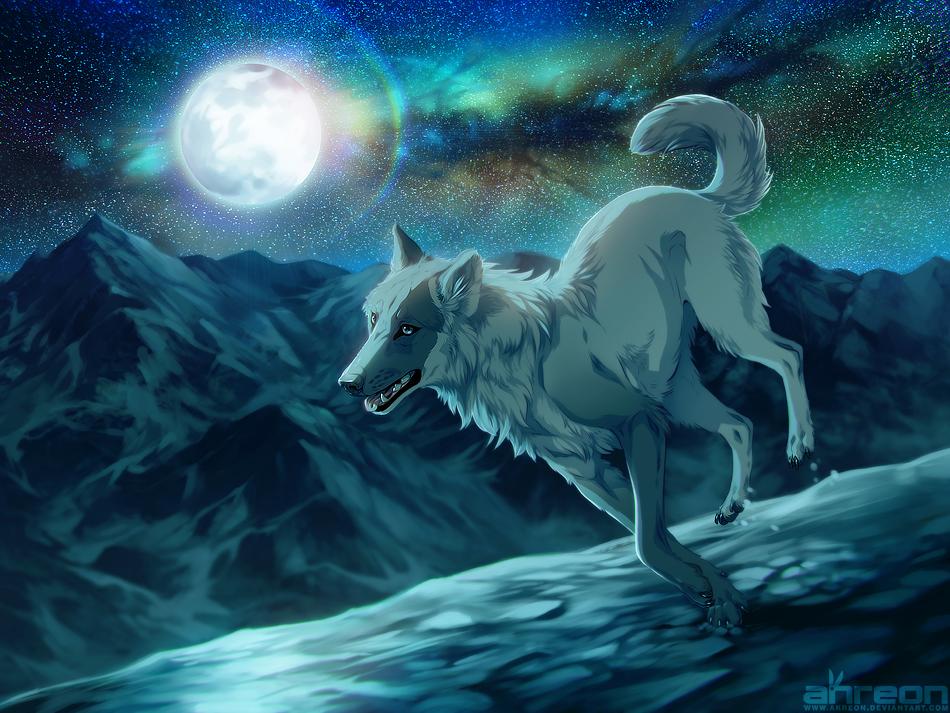 follow the moonlight by akreon