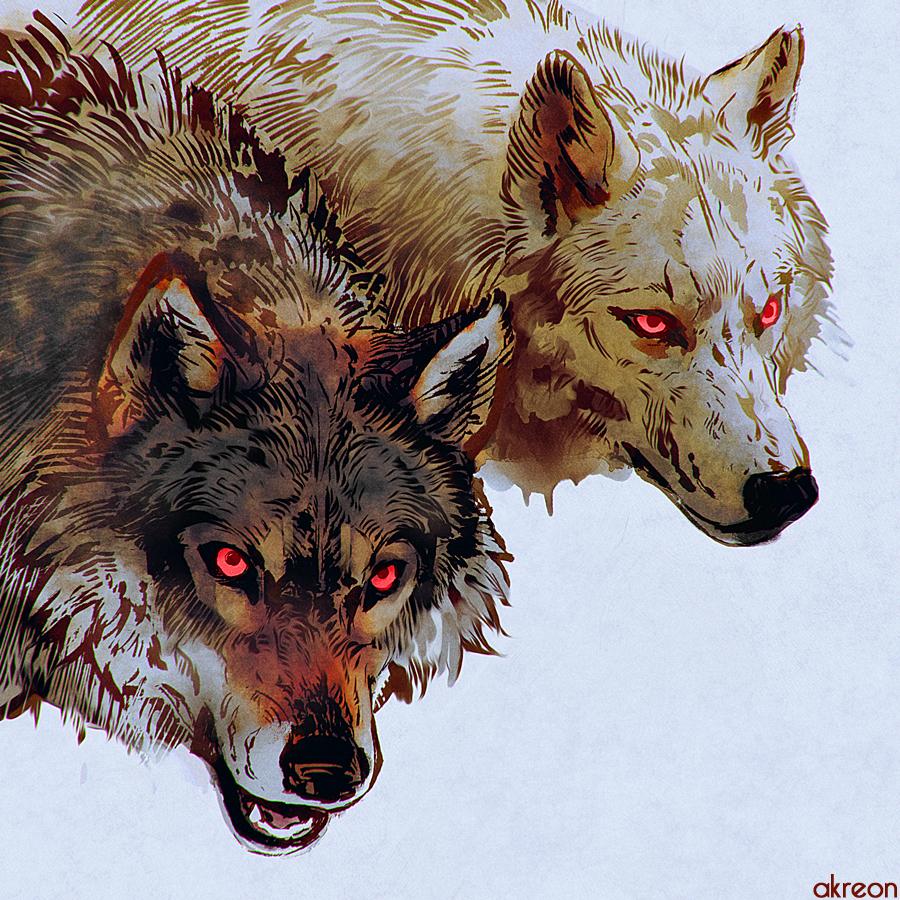 wolves by akreon