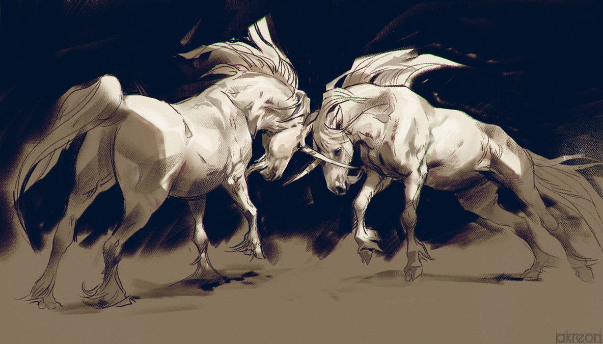 Unicorn Fight