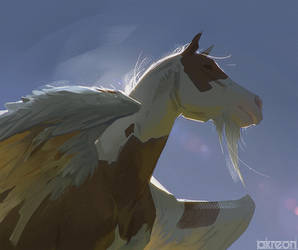 Pinto Pegasus