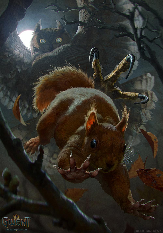 Squirrel - Gwent Card