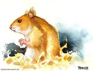 Hamster by rogercruz